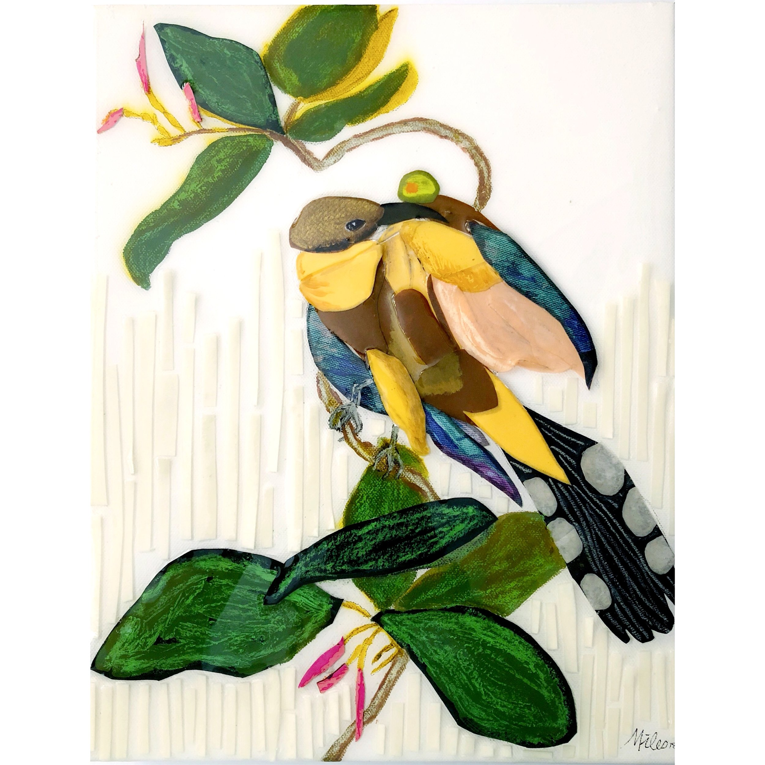 Martini Birds of America: The Mangrove Cuckoo - 11