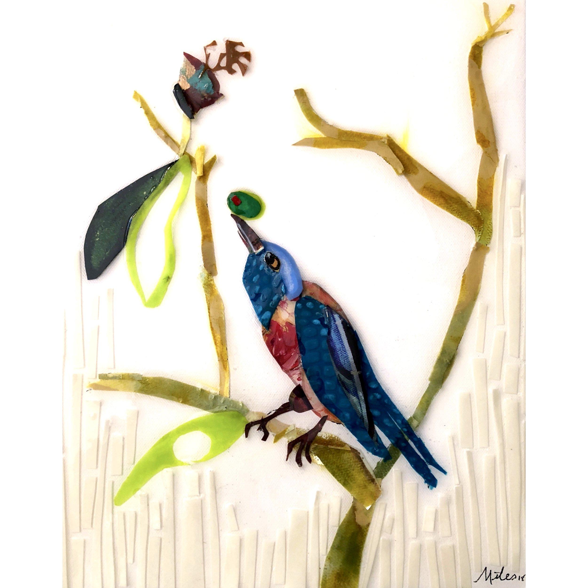 Martini Birds of America: The Western Blue Bird - 11