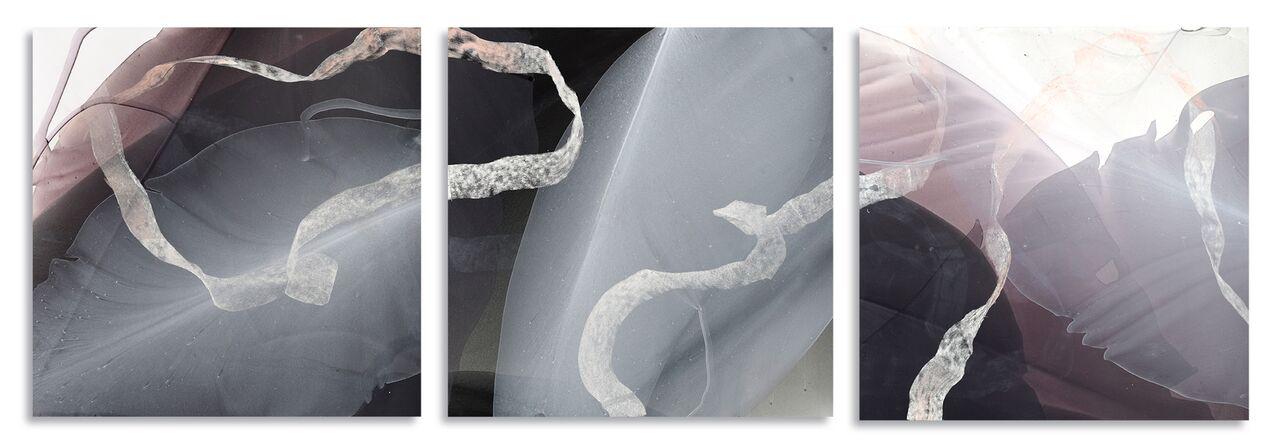 Movement Study in Warm Grey Triptych - 16