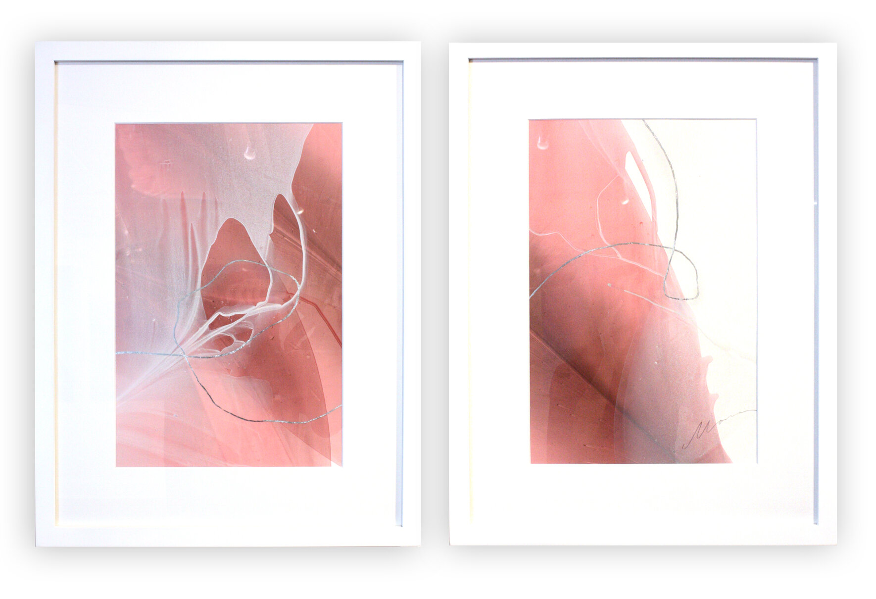 """Movement Study in Rose - 26"""" x 40"""" water media on paper$800 diptych"""