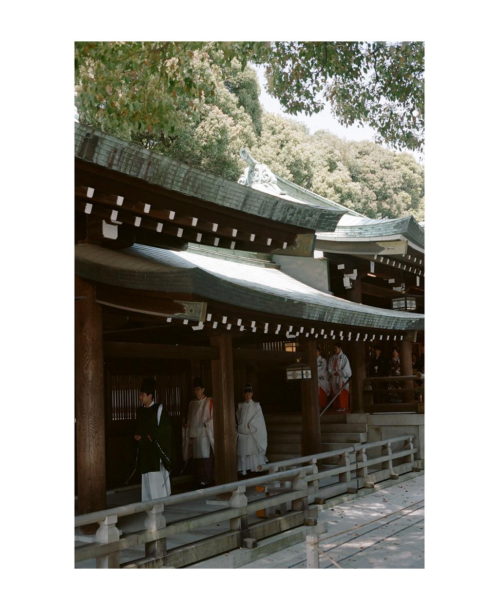Wedding Party, Meijijingu, Tokyo.