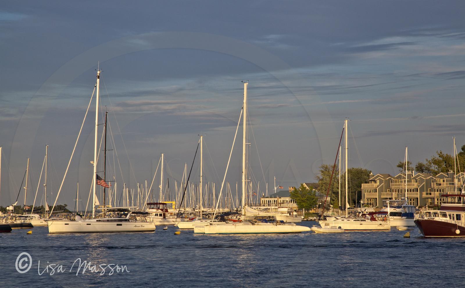 Anna Harbor Moorings 9996.jpg