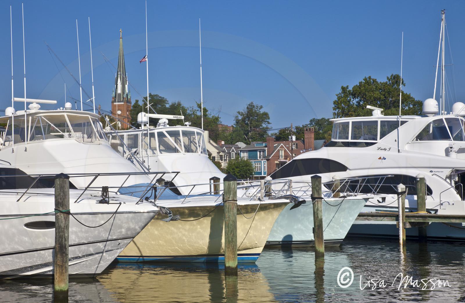 Yacht Basin 5713.jpg
