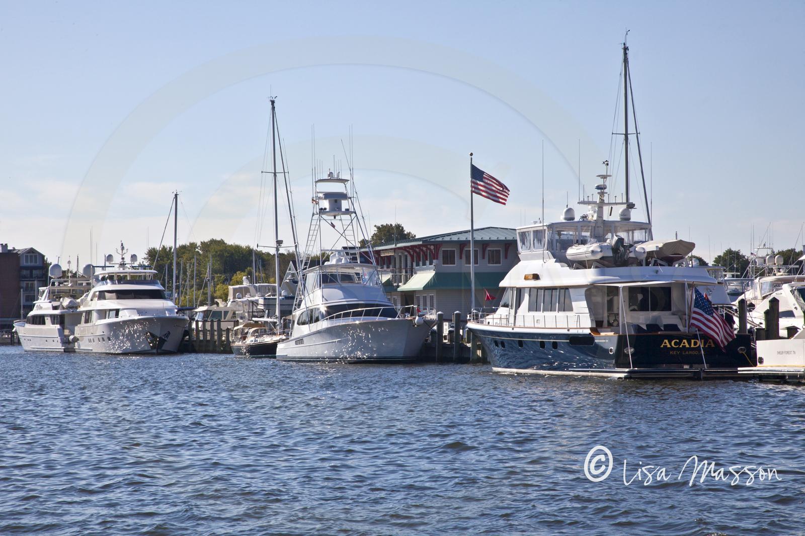 Yacht Basin 9088.jpg