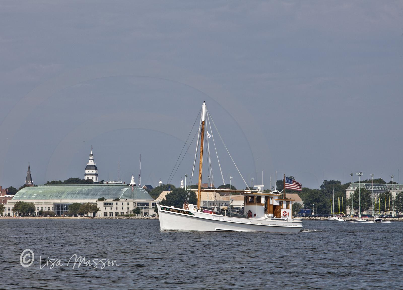 Buy Boat in Harbour 5520.jpg