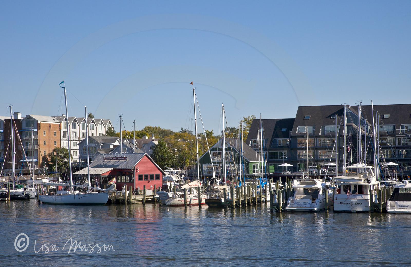 Eastport Annapolis City Marina 8534.jpg