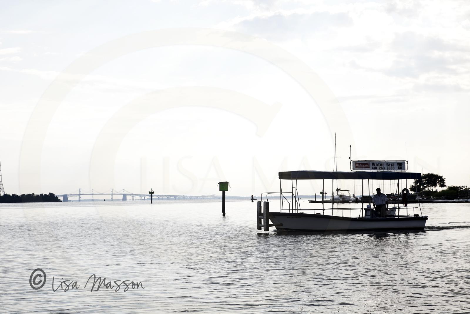 Water Taxi 4936.jpg