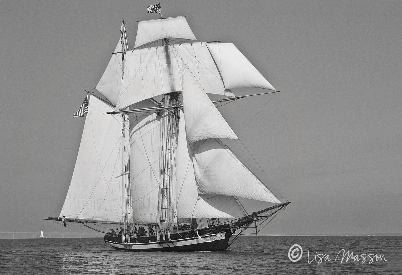 Pride of Baltimore ll Sail 2130 b&w