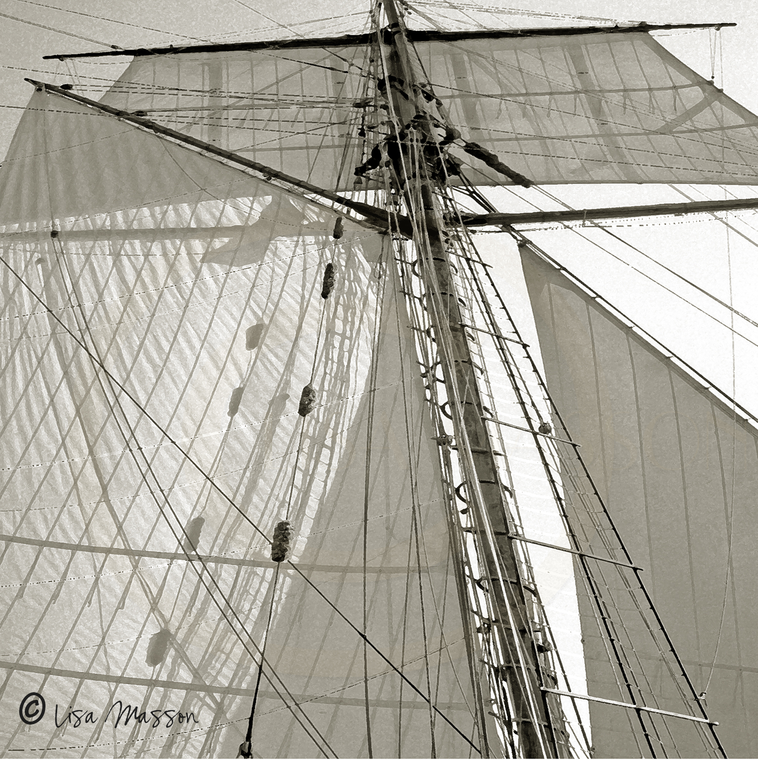 Pride of Baltimore ll Sails sepia