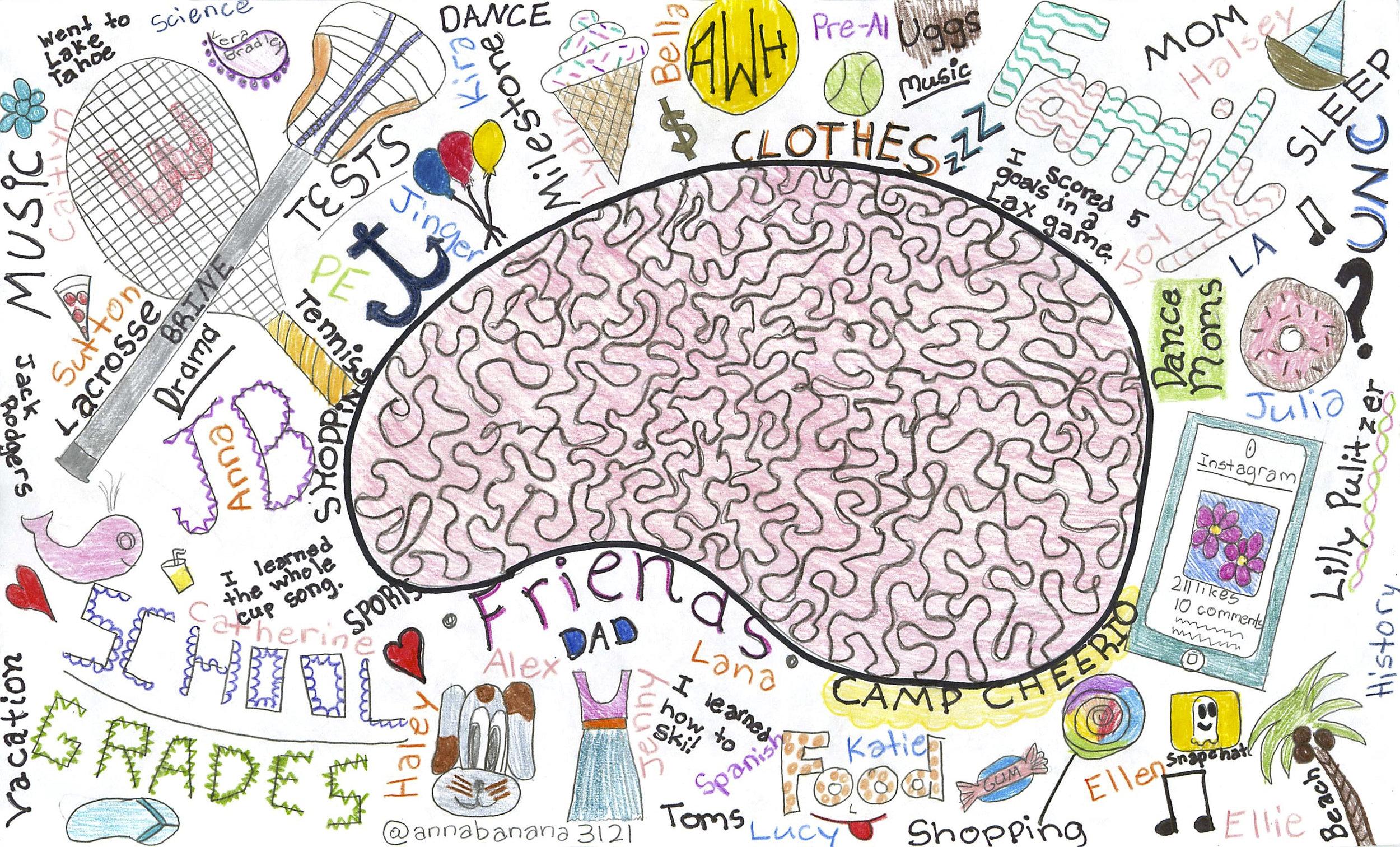9 6th brain donnelly annawestbrain.jpg