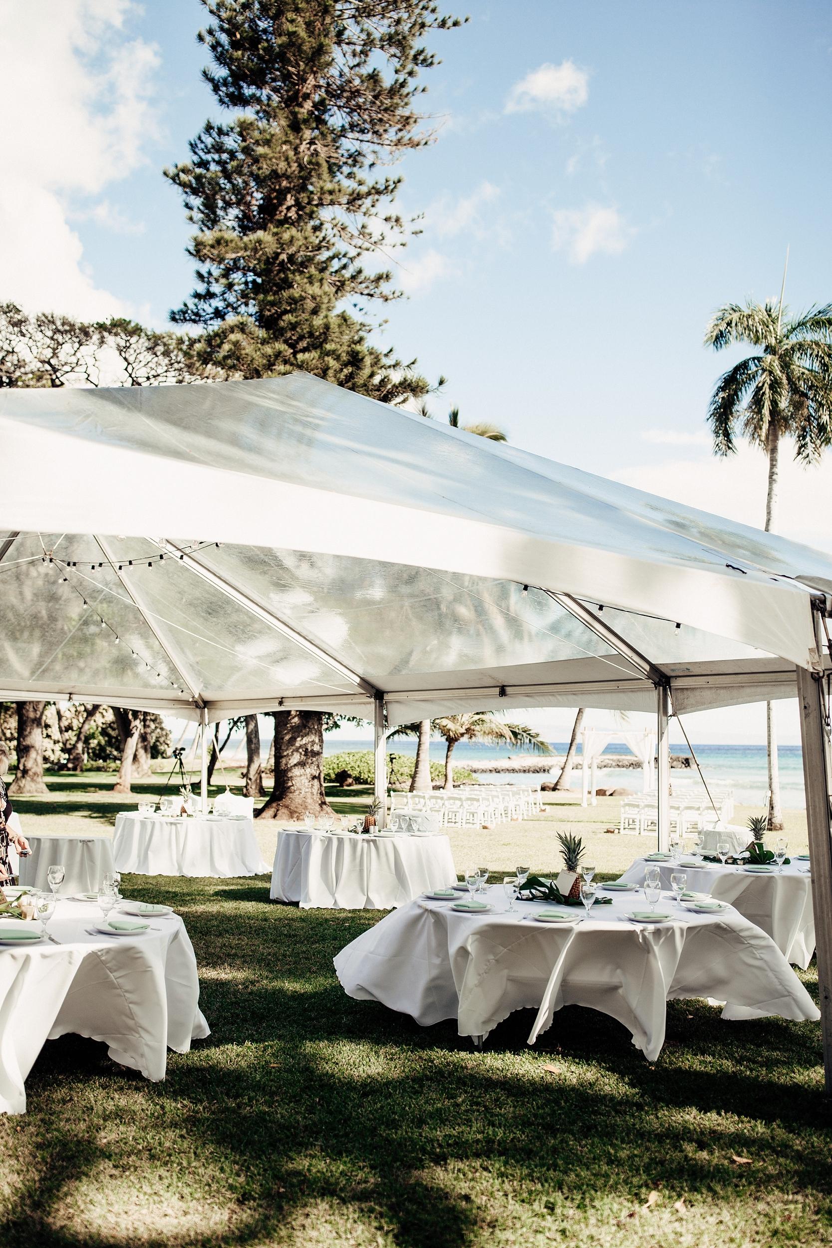 hawaii-wedding-photographer_0069.jpg