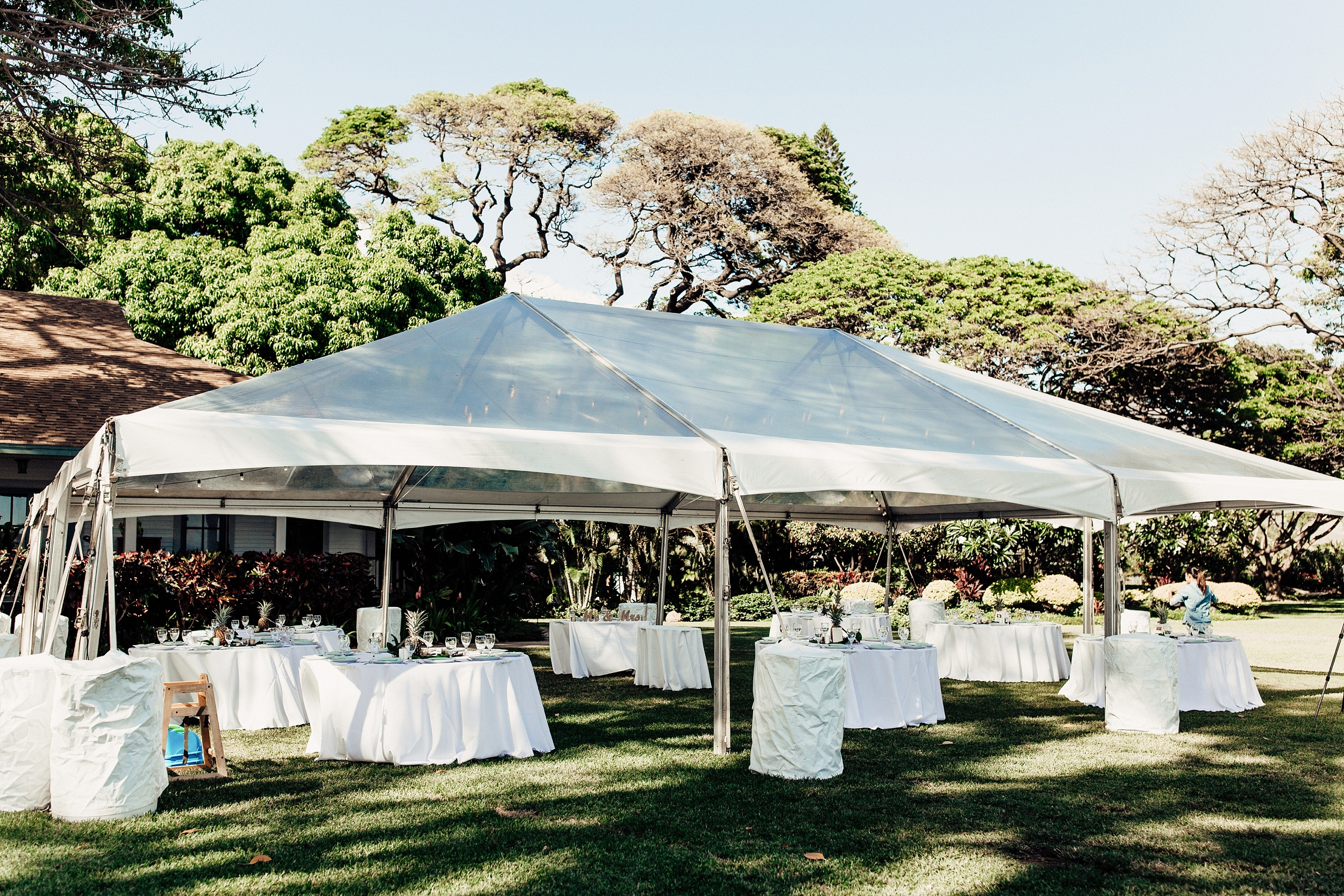 hawaii-wedding-photographer_0080.jpg