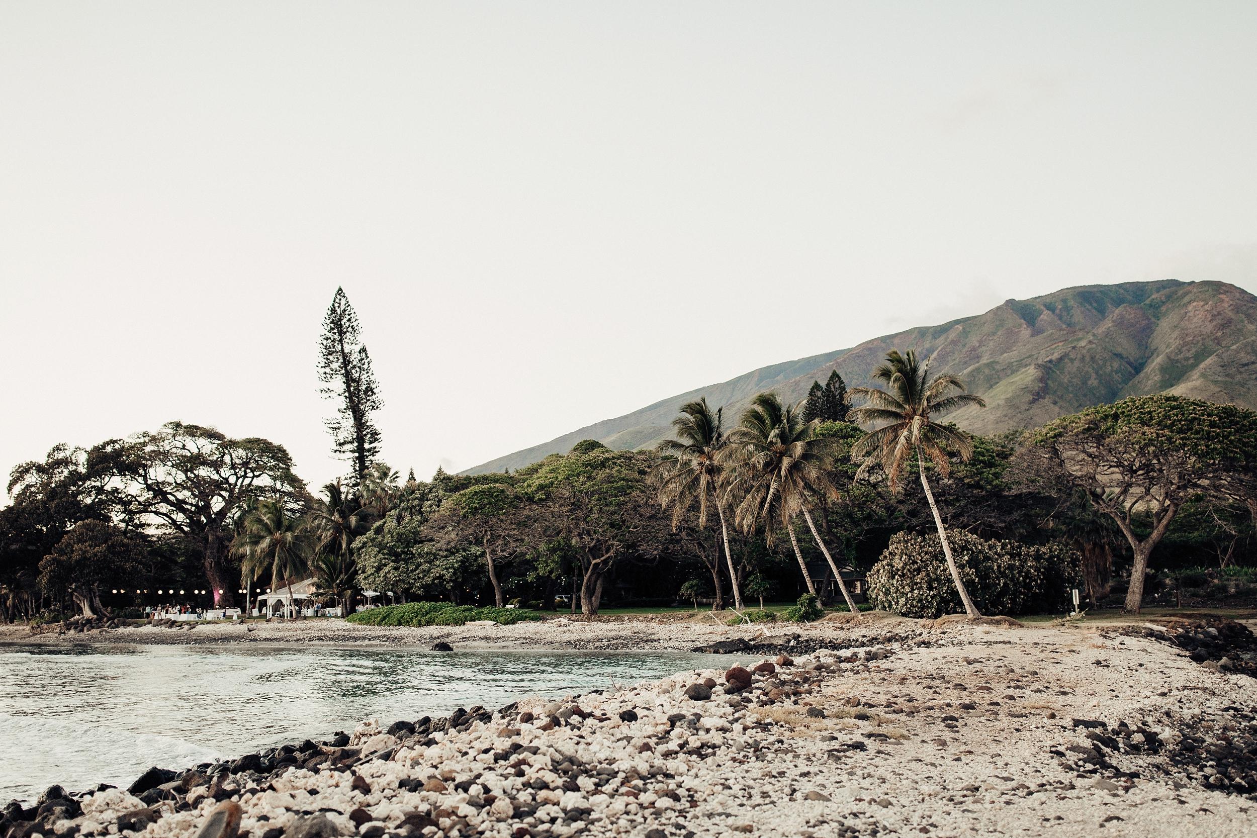 hawaii-wedding-photographer_0139.jpg