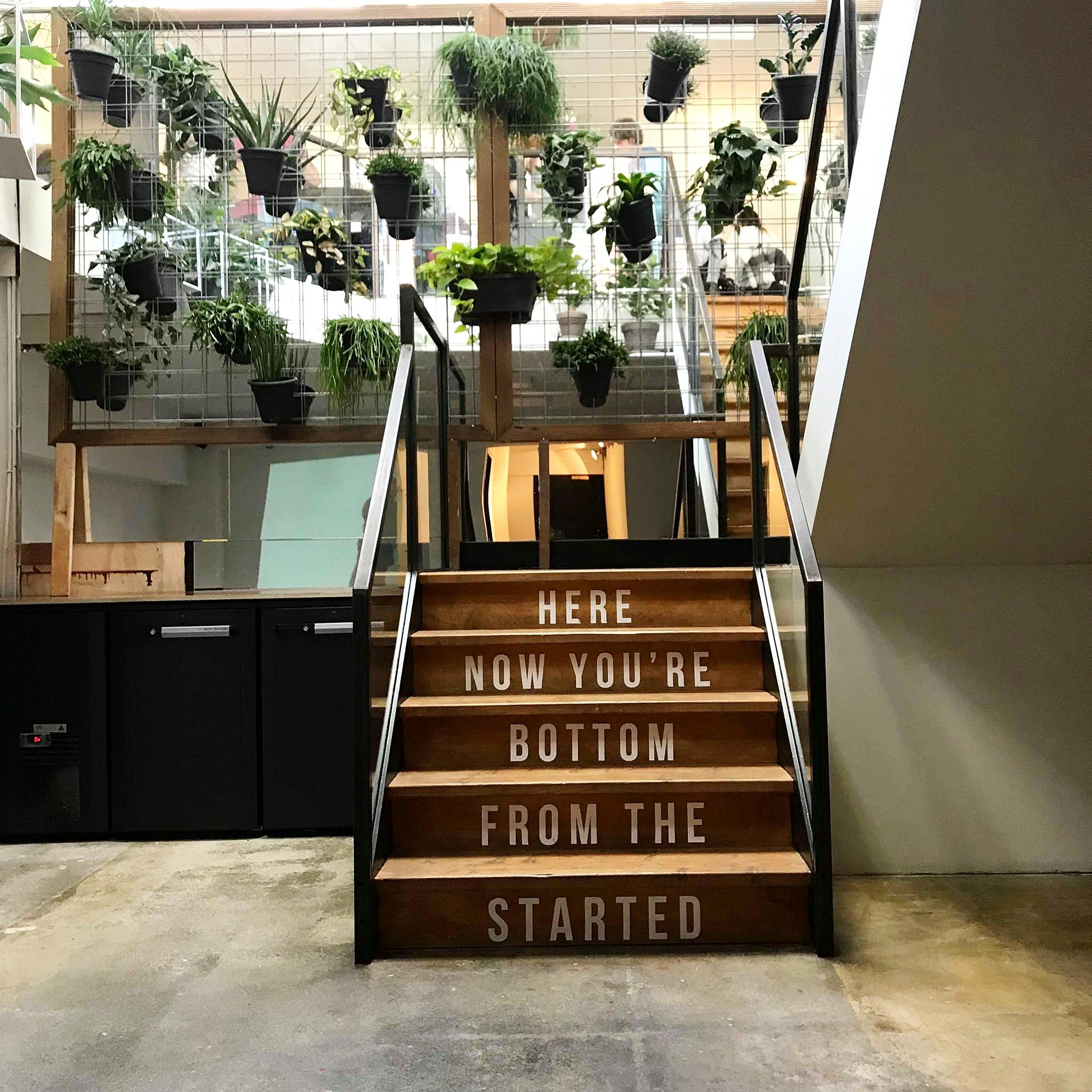 stairs +plant.jpg