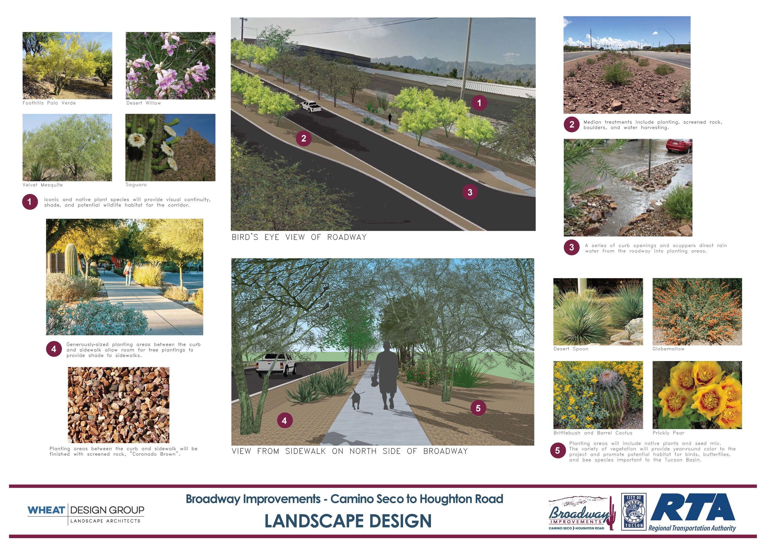WDG created boards for an Open House that helped the community visualize the roadway design. Material palettes for plant and groundcover help to understand the finer details of the project, and also help our team picture how the materials will look as a whole.