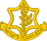 Israeli Defense Force