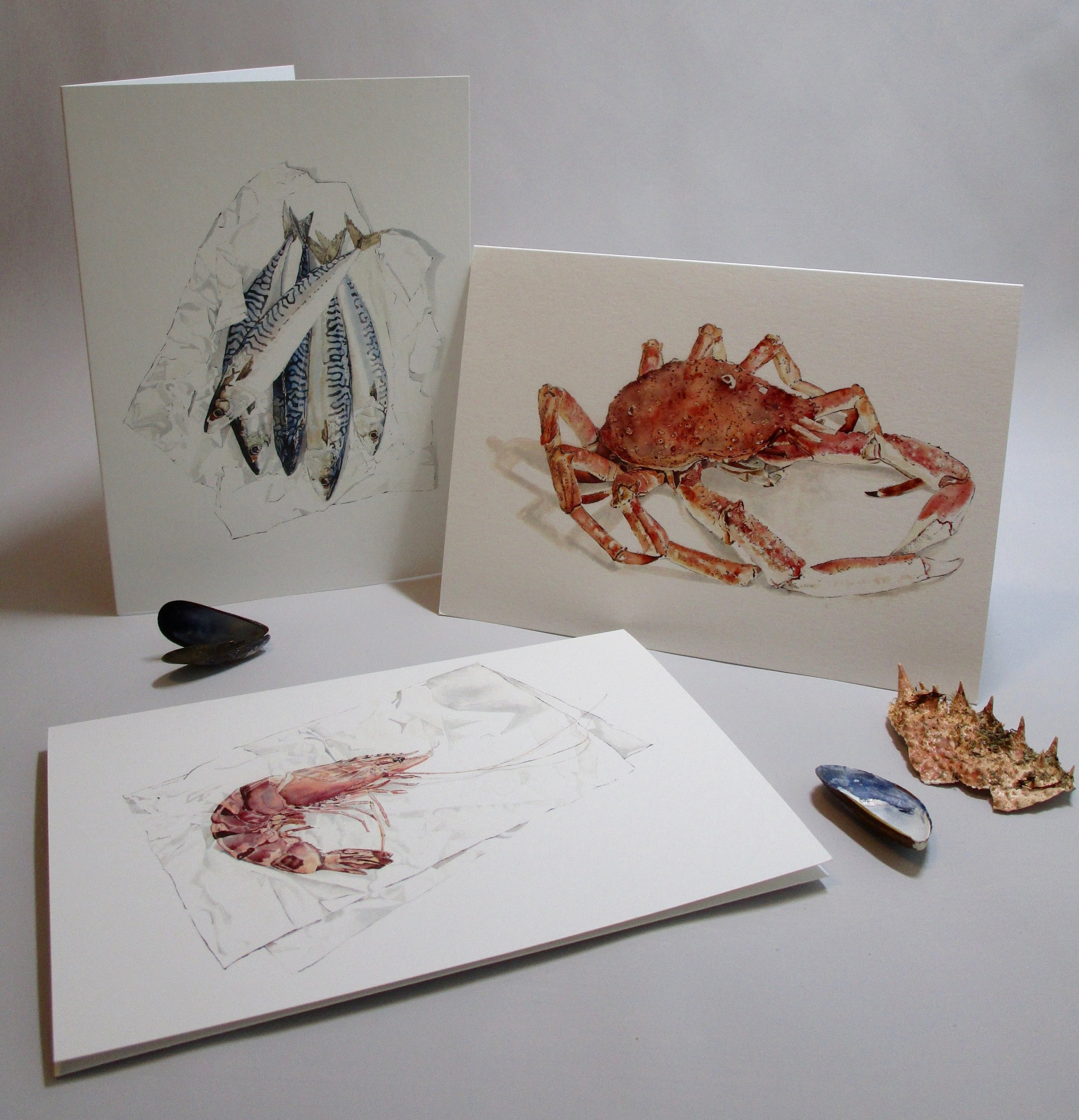 Mackerel, Spider Crab & Tiger Prawn Greetings Cards of Original Paintings