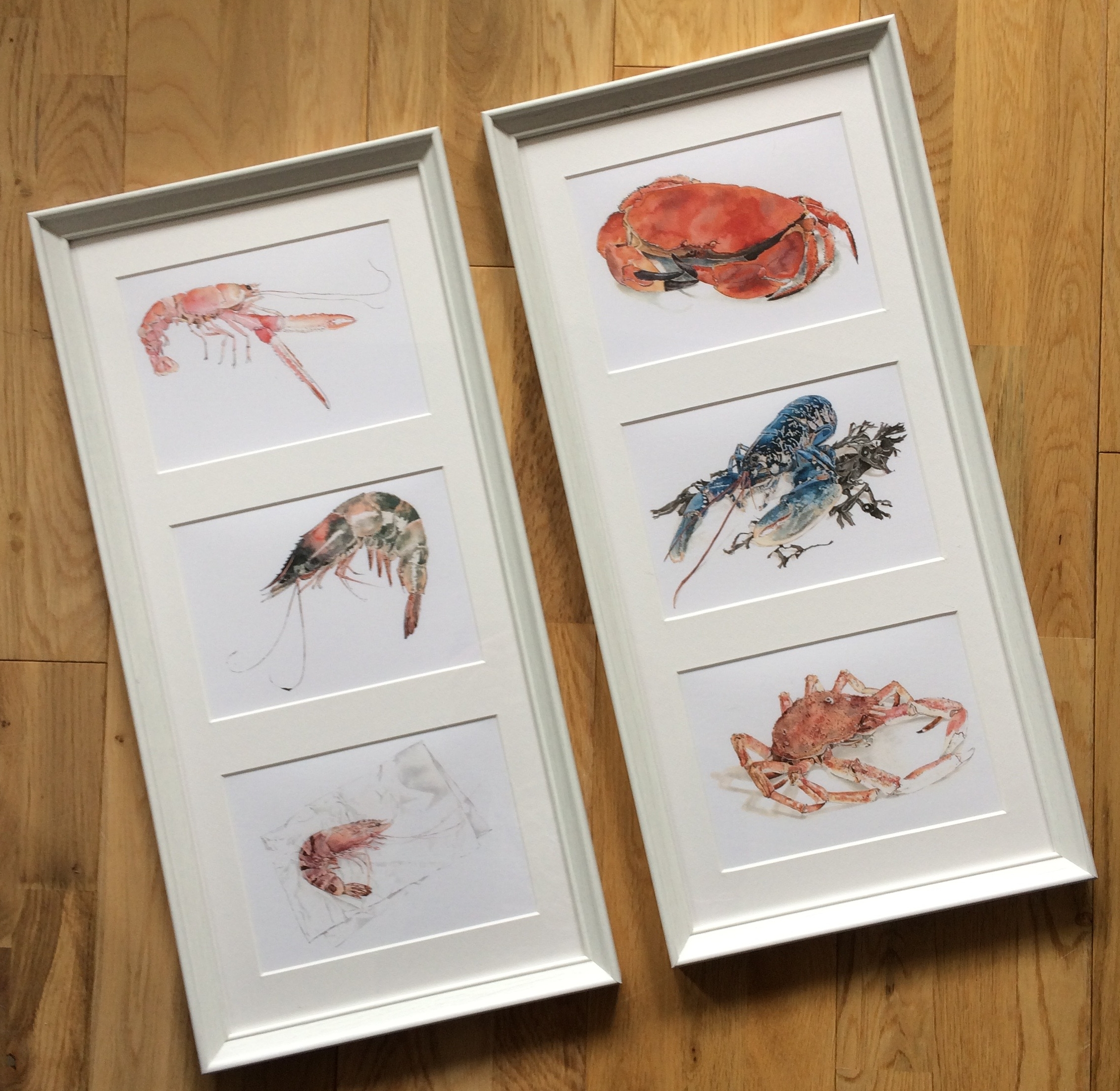 Framed seafood greetings cards