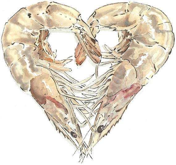 Shellfish Heart - Blotted Line & Watercolour