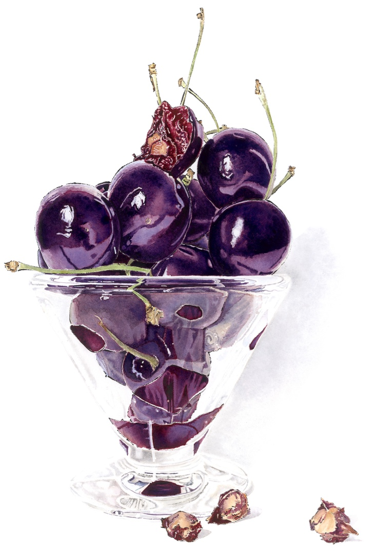 Bite - Blotted Line & Watercolour. Still life painting of a glass bowl of cherries by Lucy Clayton.