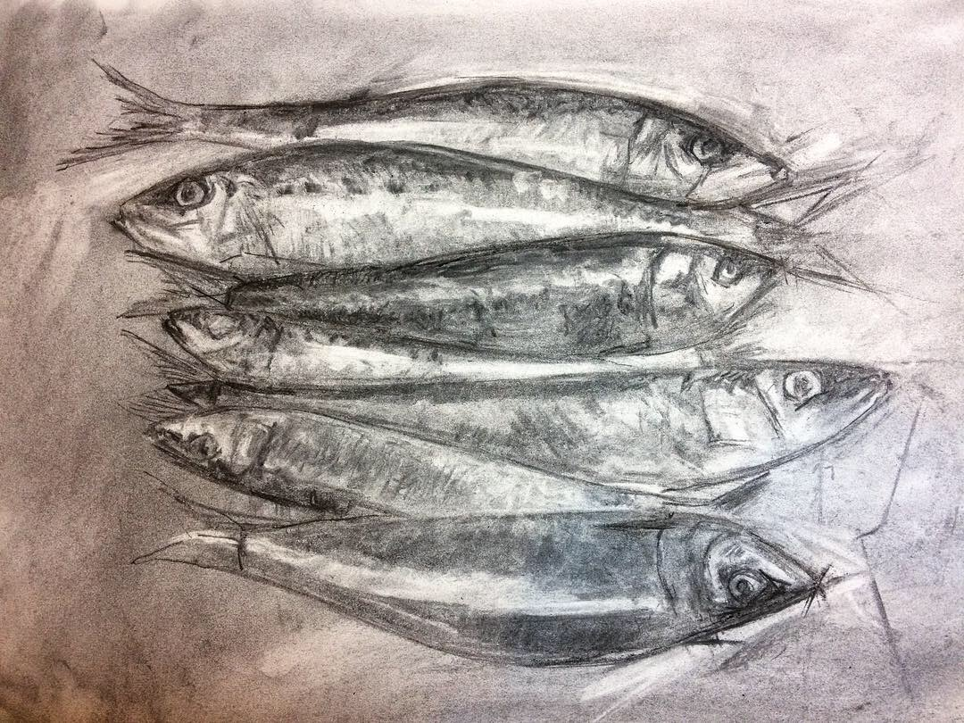 Quick charcoal sketch to work out composition of sardines.