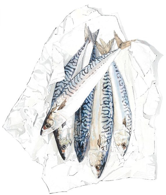 Mackerel by Lucy Clayton