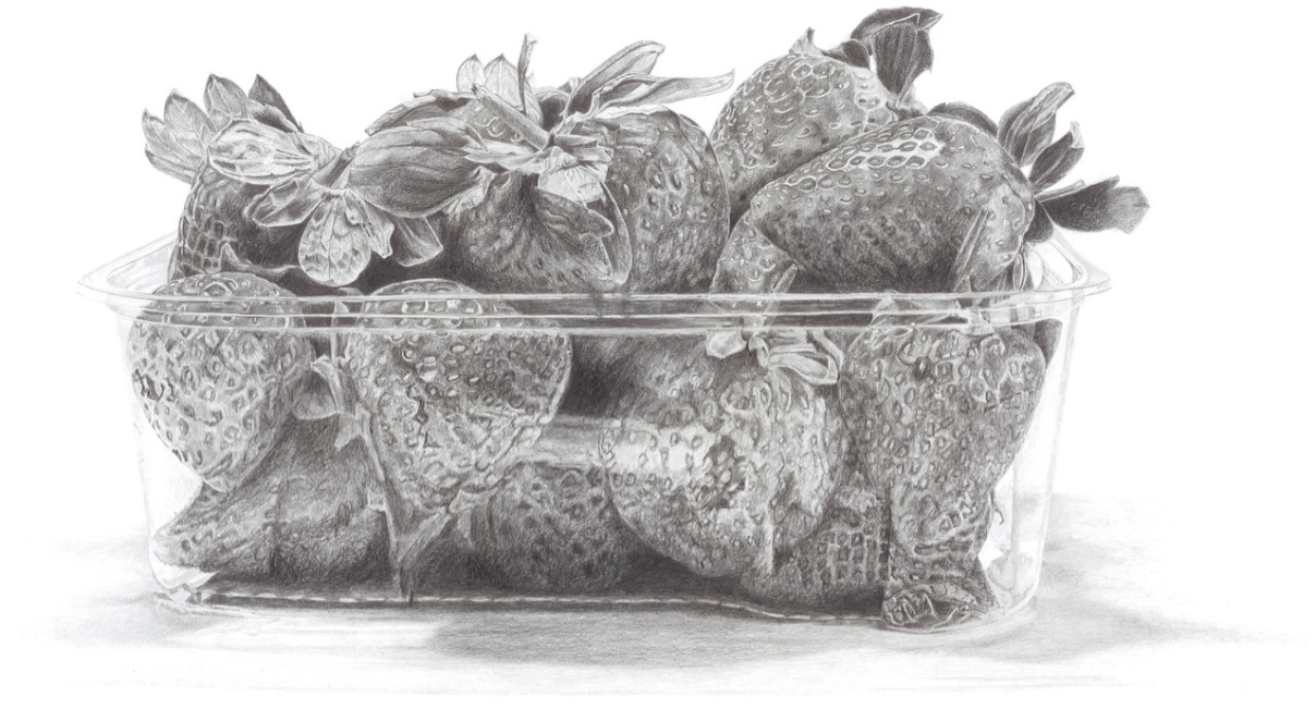 Pencil Drawing of Punnet of Strawberries