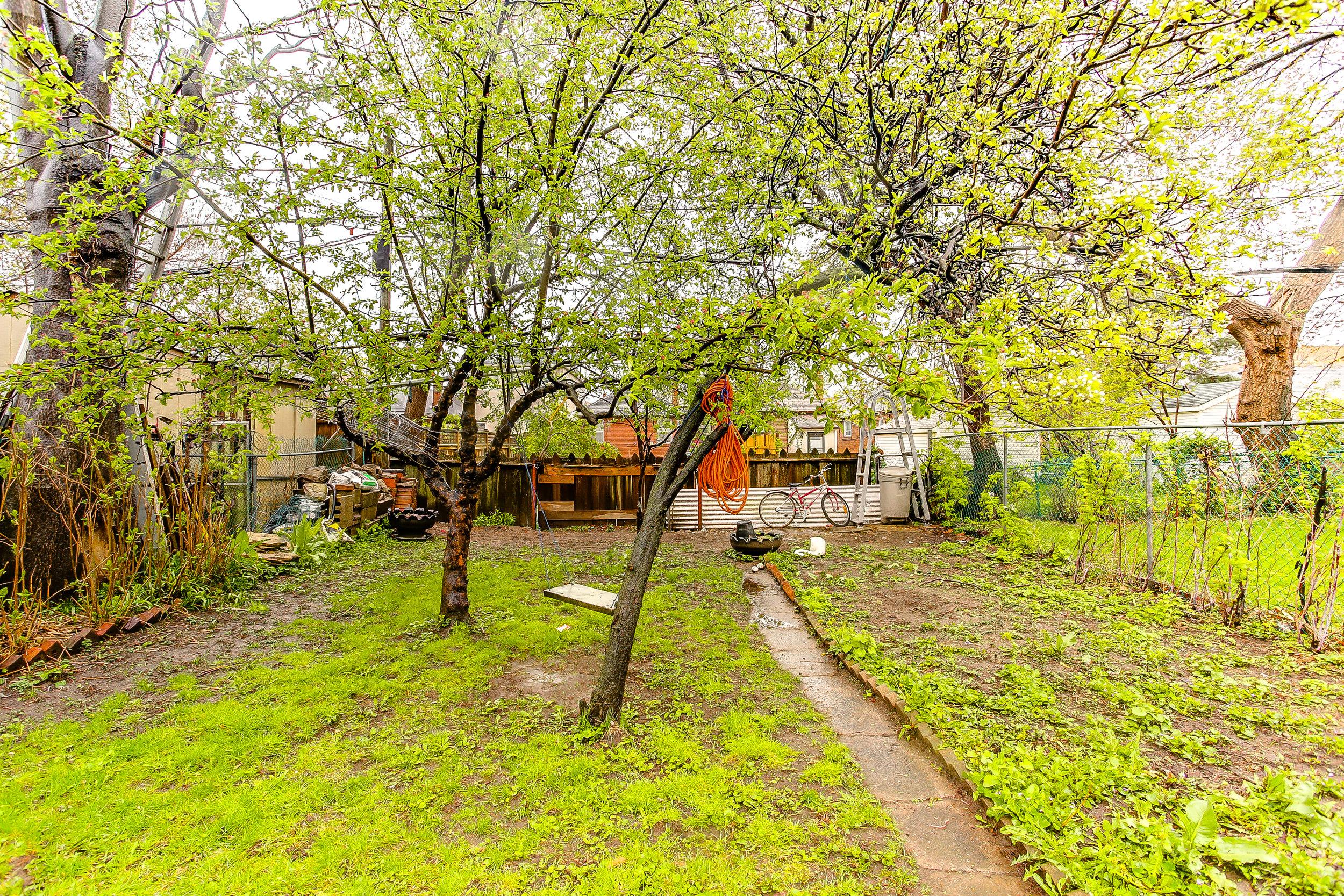 31_backyard1.jpg