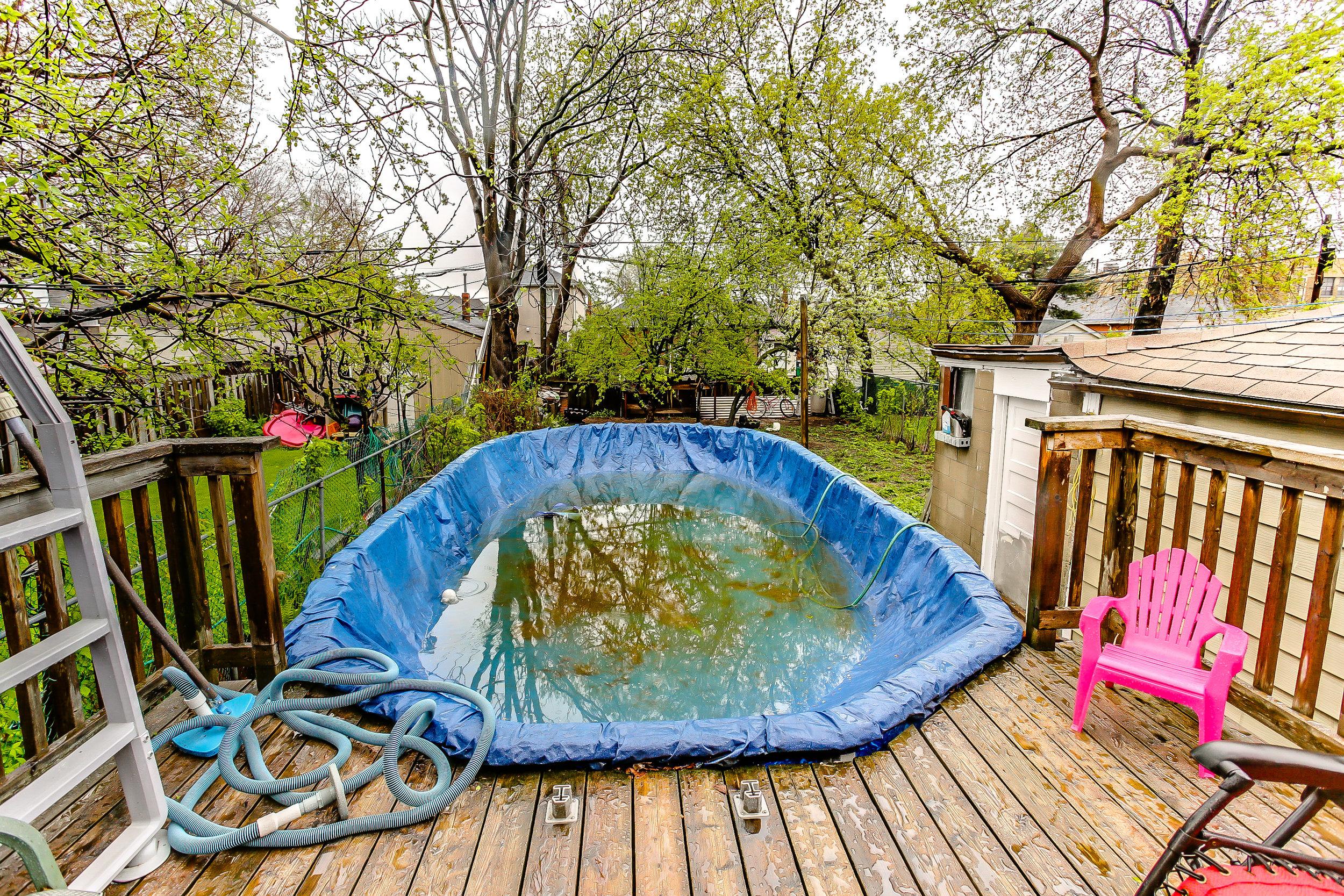 35_backyard5.jpg