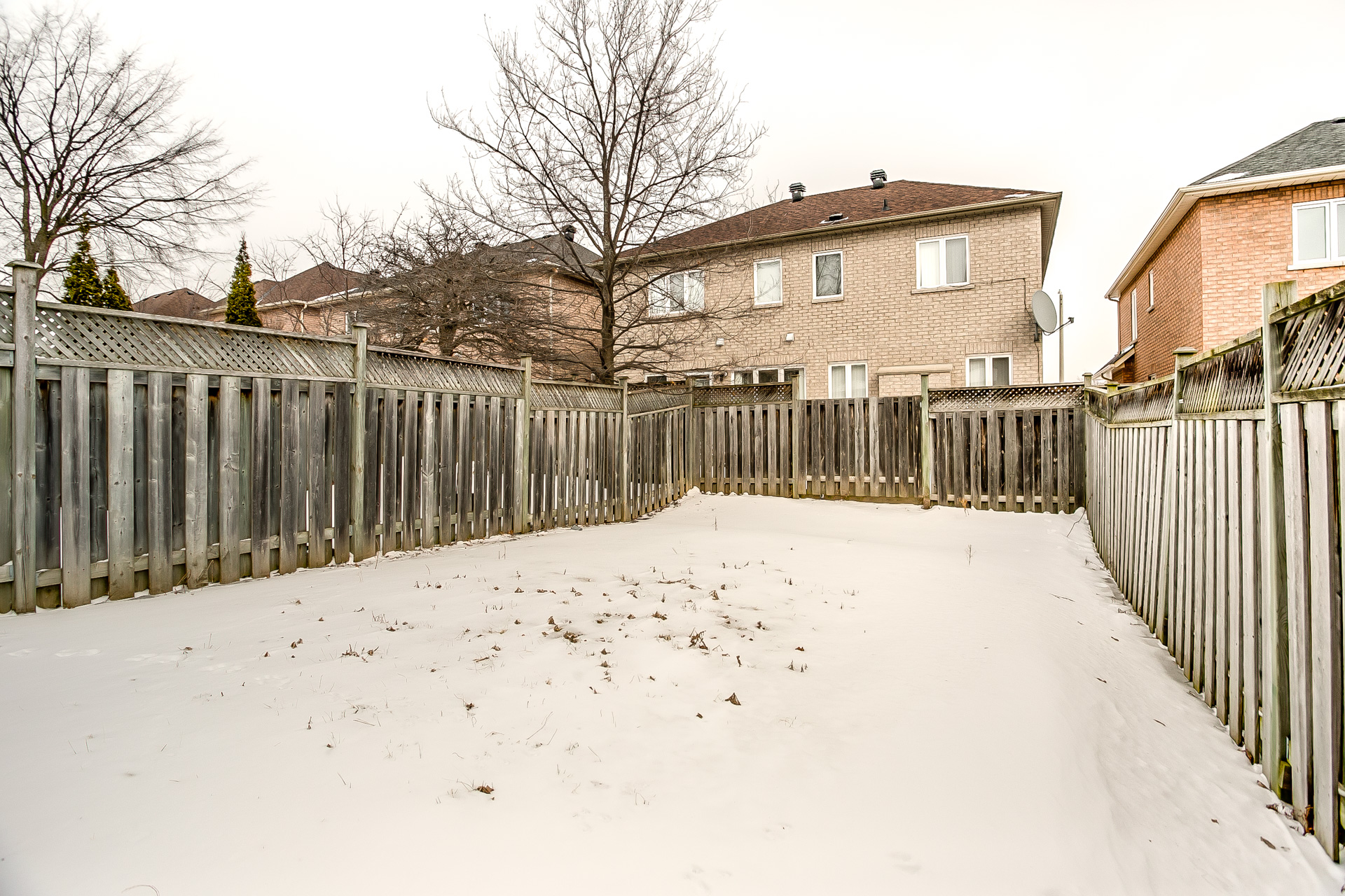 40_backyard_2.jpg