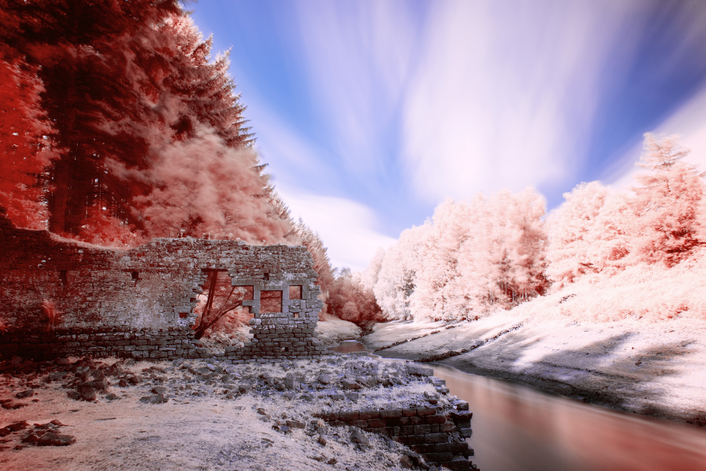 edit-infrared-photos.jpg