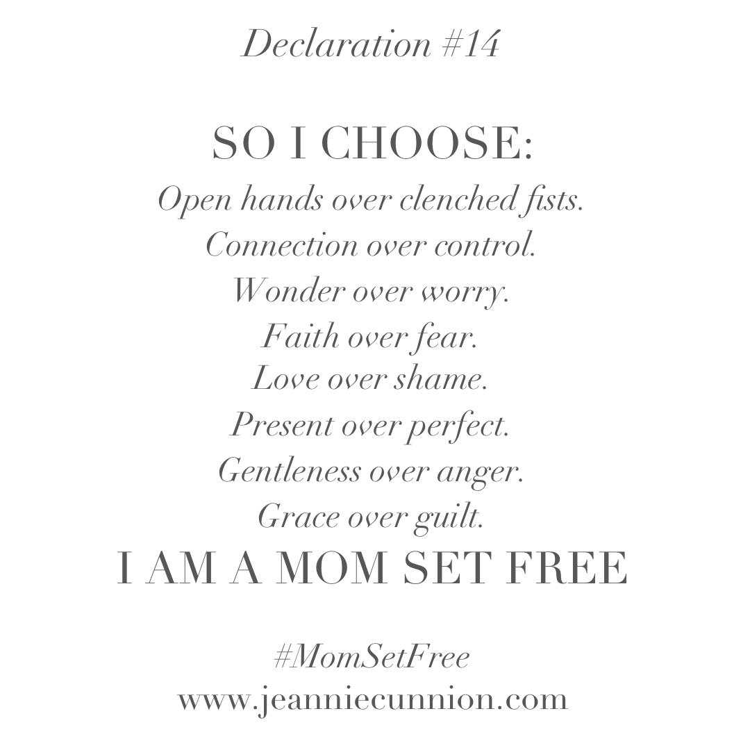 Declaration #14.jpg