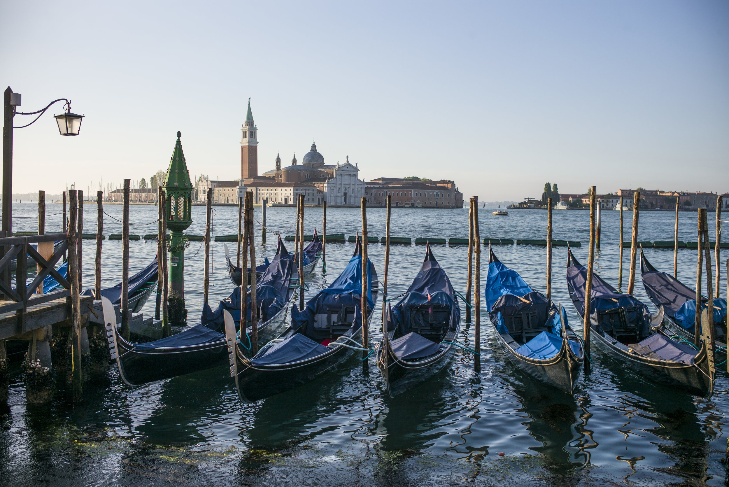 Gondolas in the morning sun at San Marco