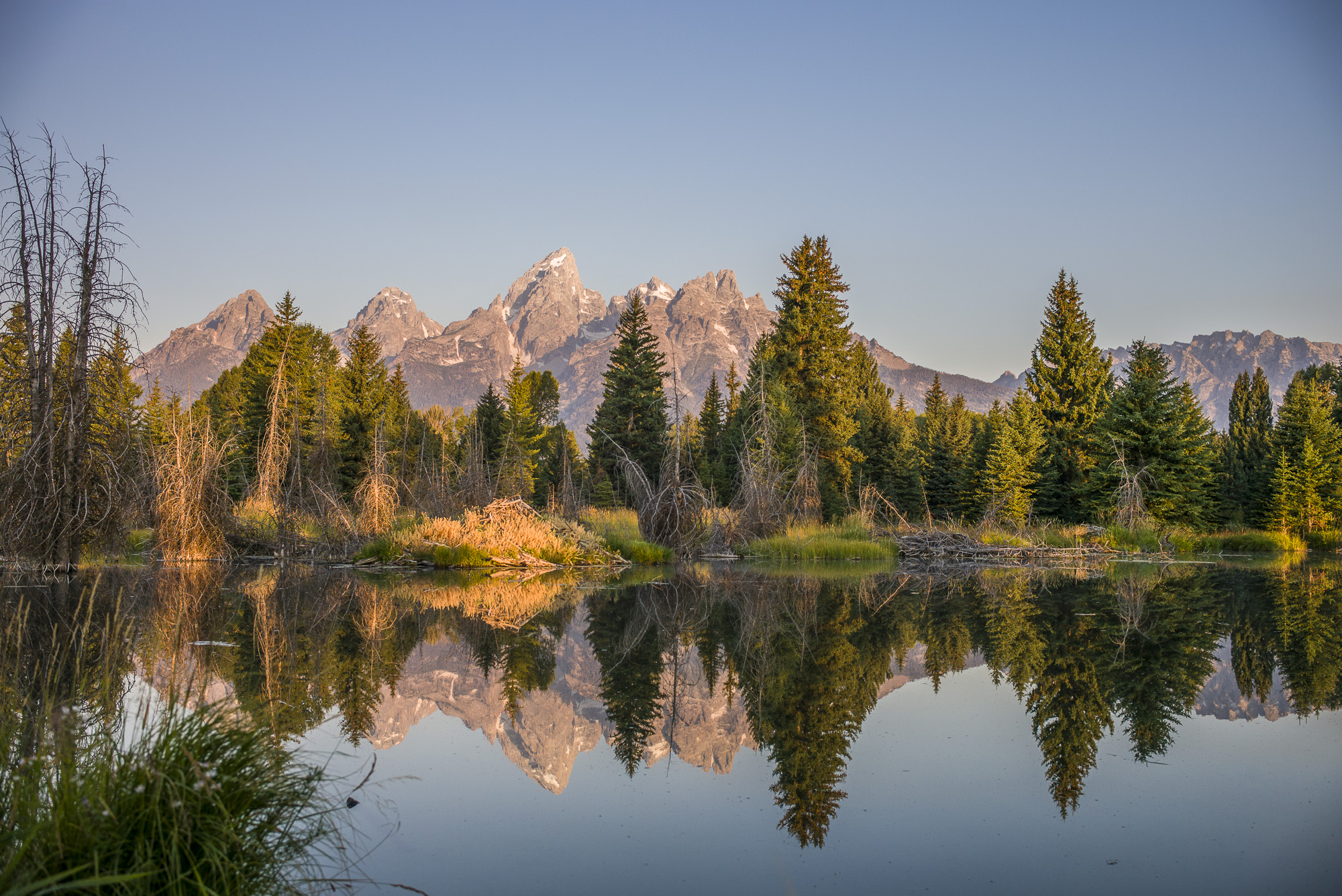 The Grand Tetons, one of the viewing options