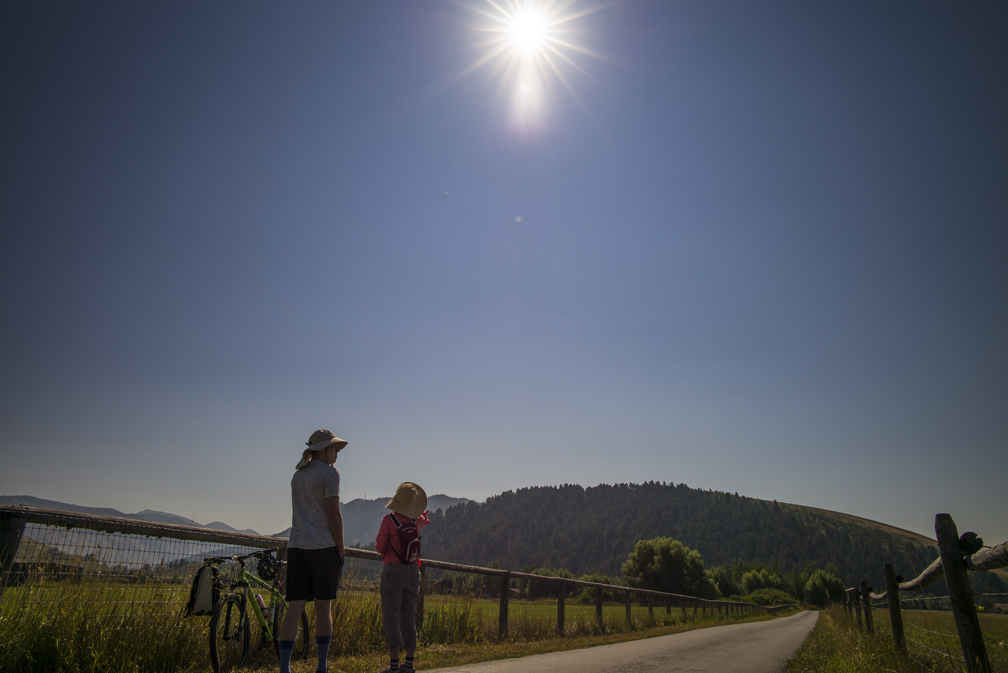 Totality Anticipation