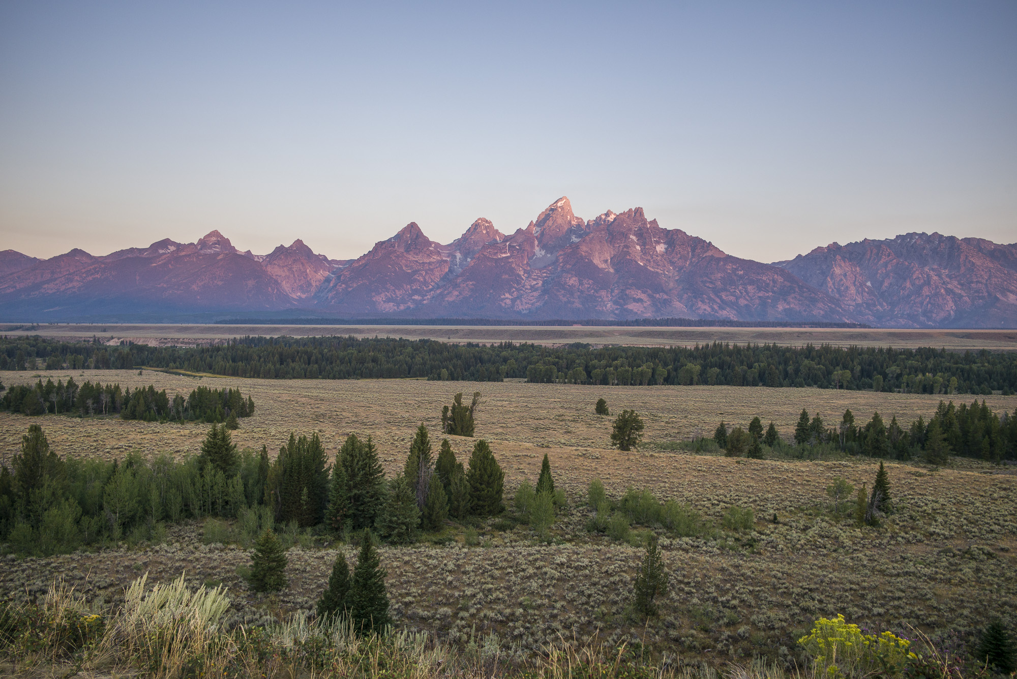 Grand Teton Morning