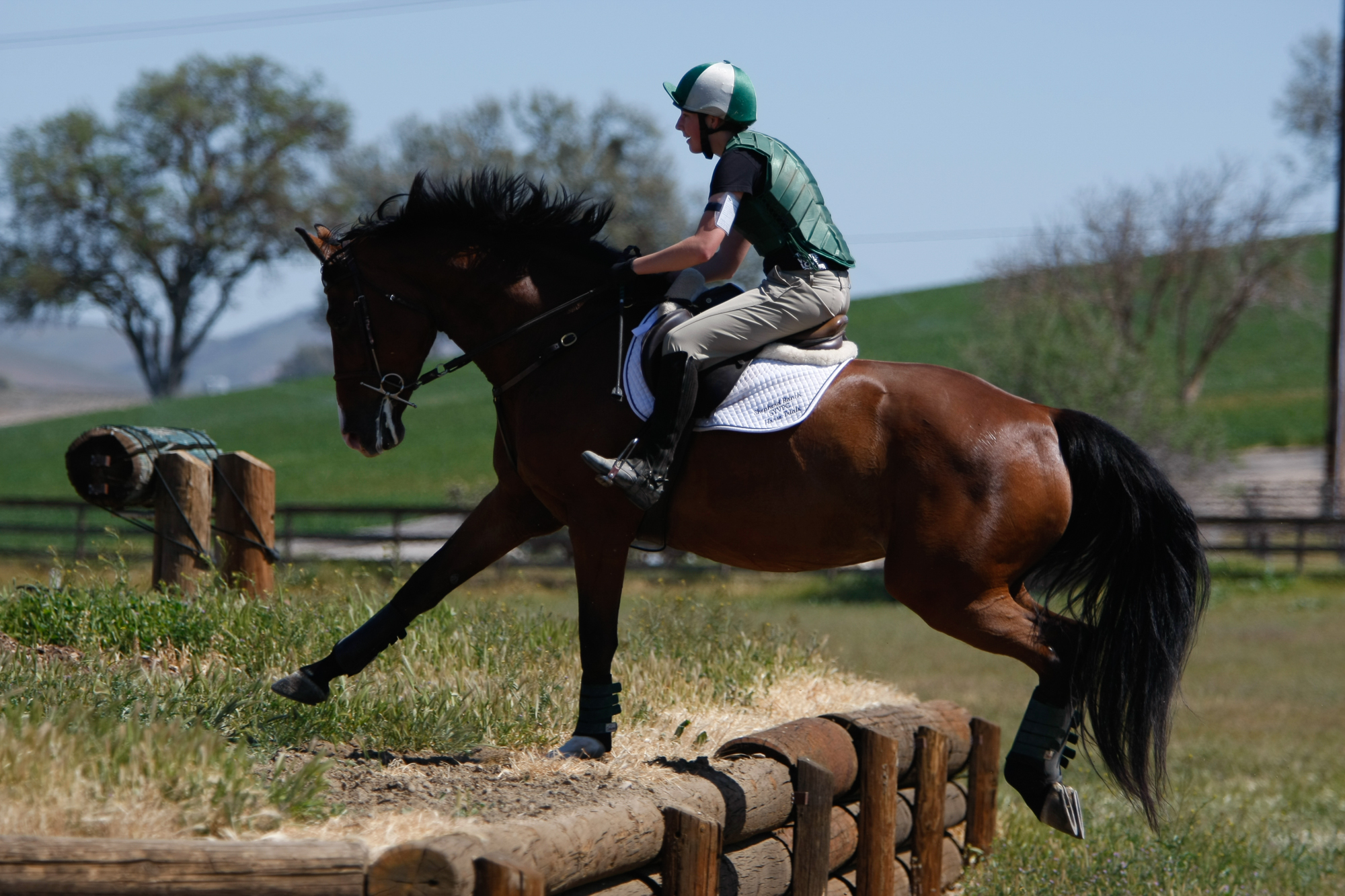 Learning to shoot equestrian sports