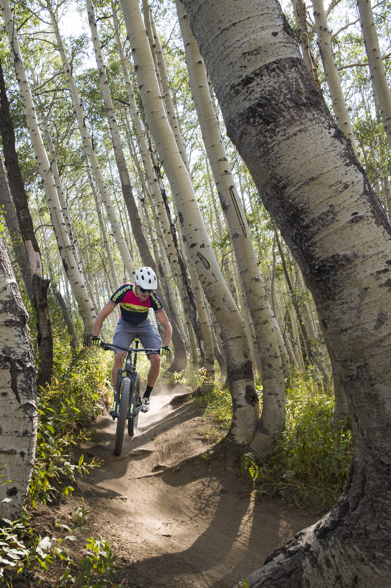 Miro riding single track through the aspens on the Crest Trail