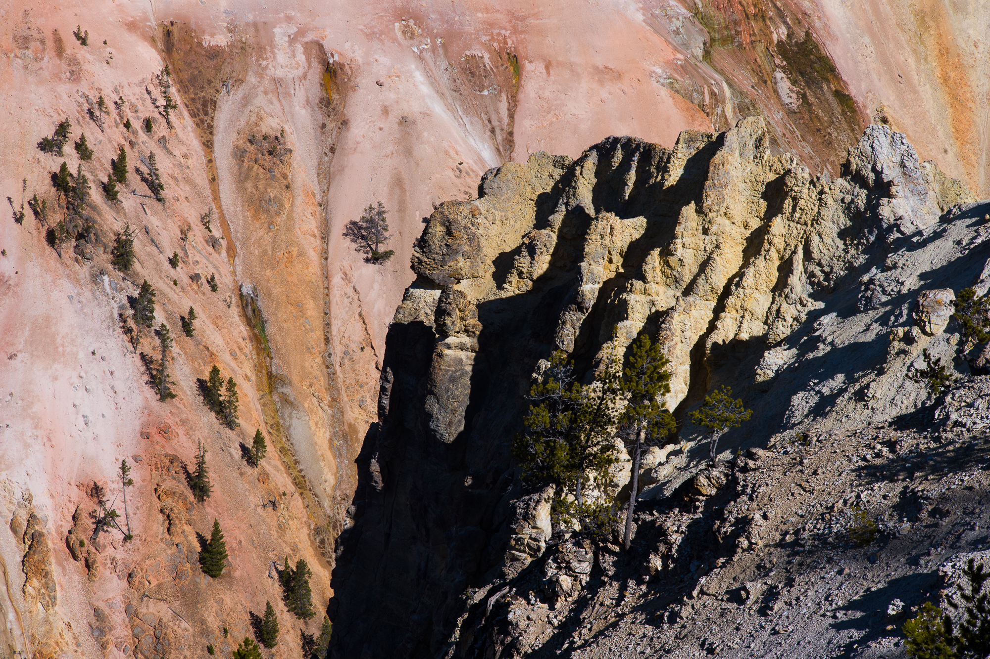 Colors of the Grand Canyon of Yellowstone