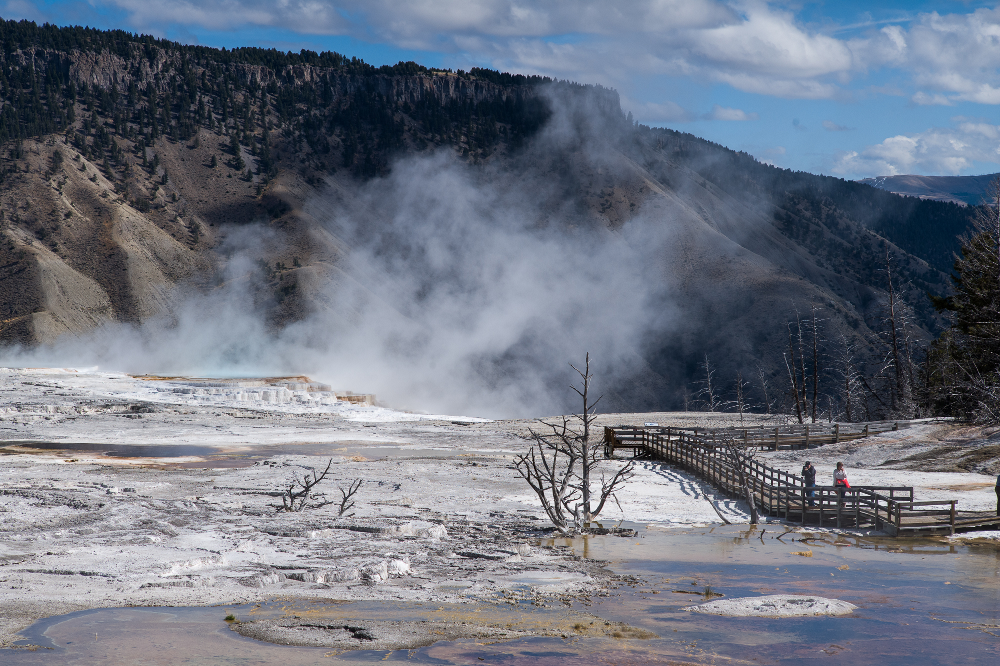 Top of Mammoth Hot Spring