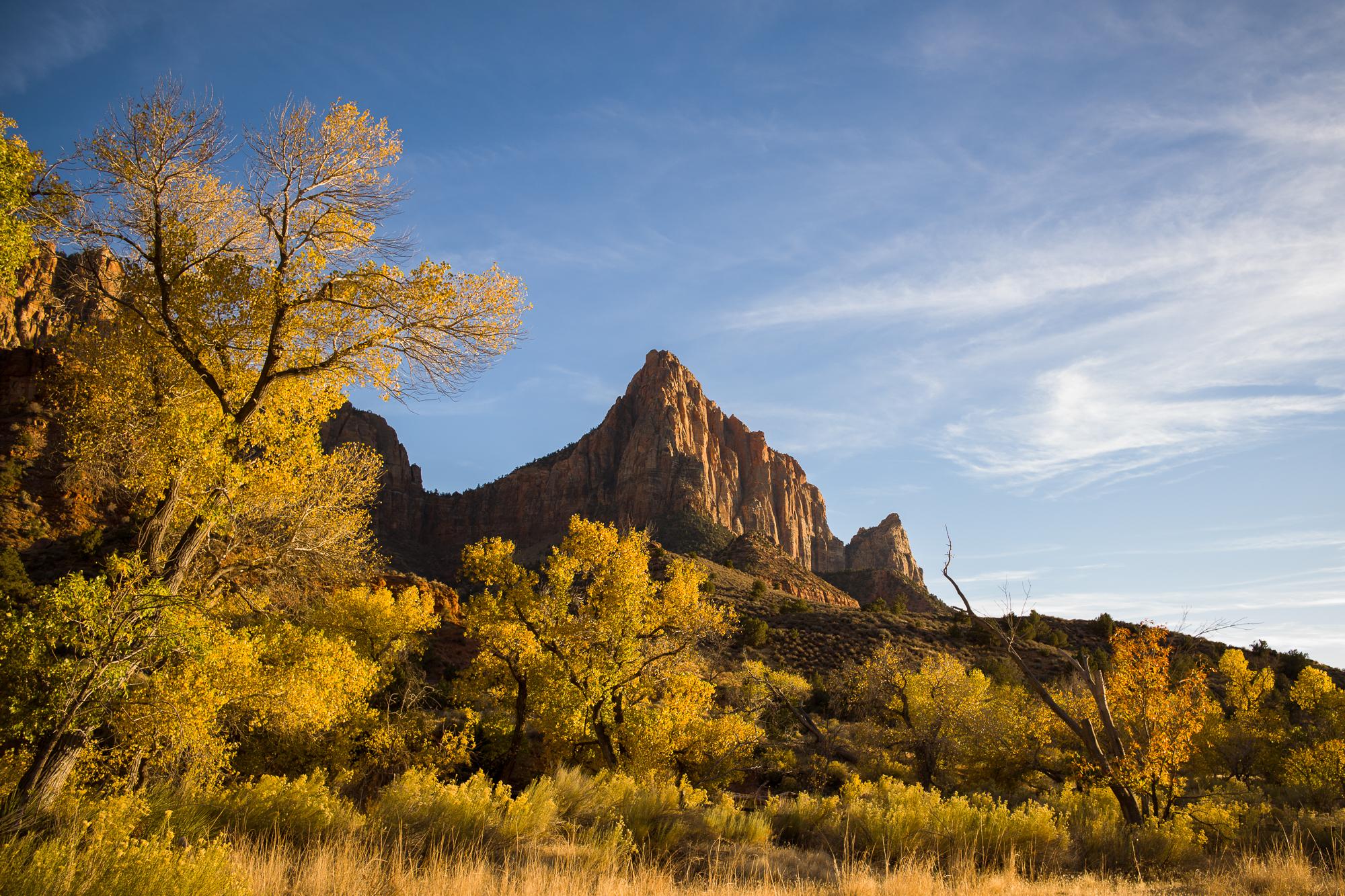 Watchman Trail in Autumn