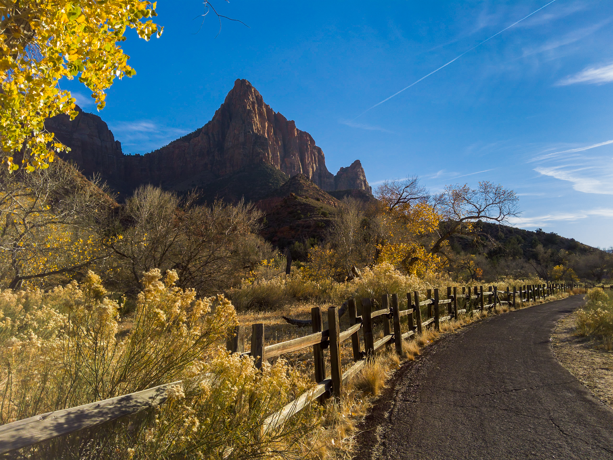 Light L16 at 28mm - Watchman's in Zion