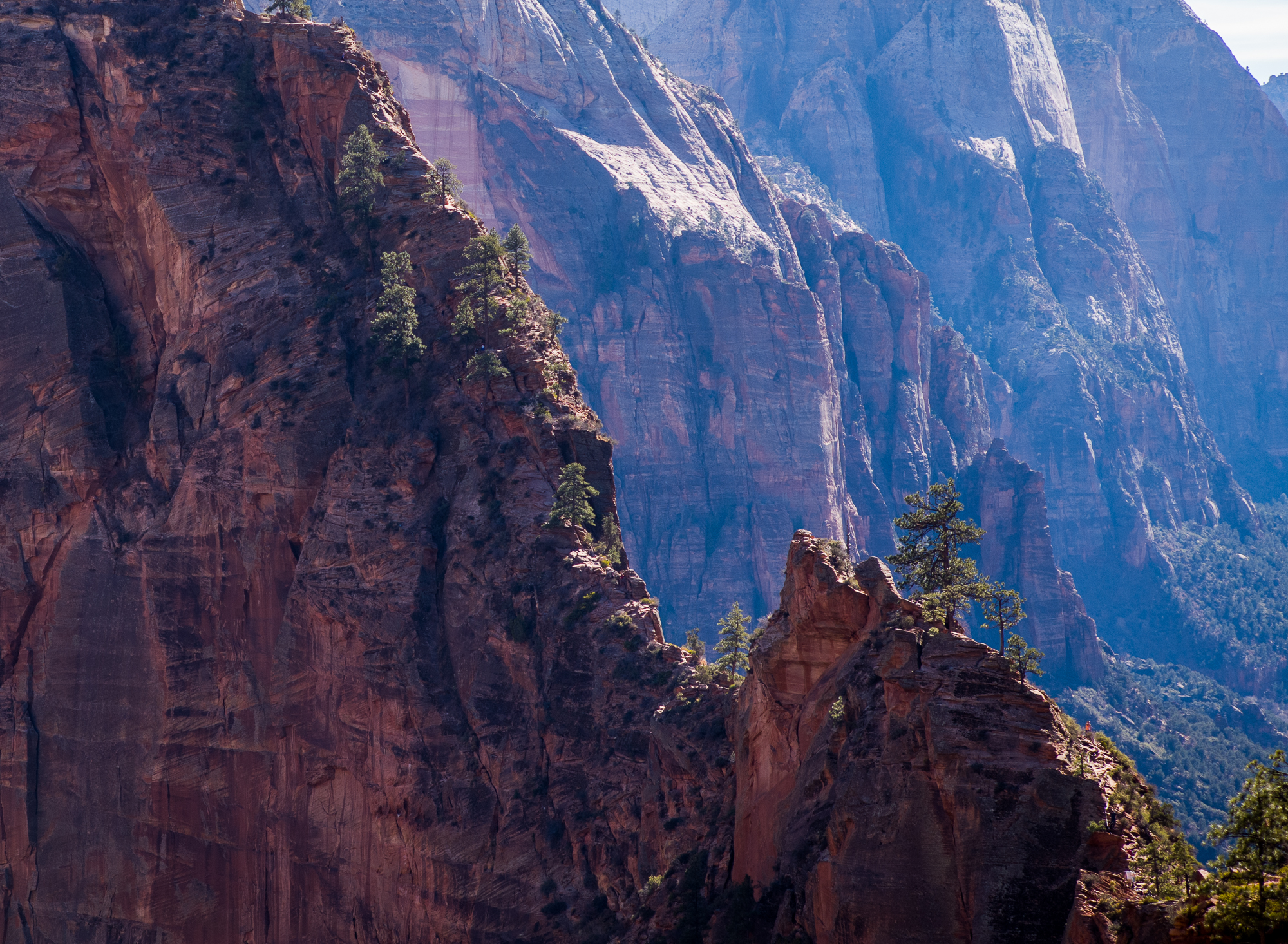 The exciting part of Angels Landing trail - lower right to upper left along the ridge line