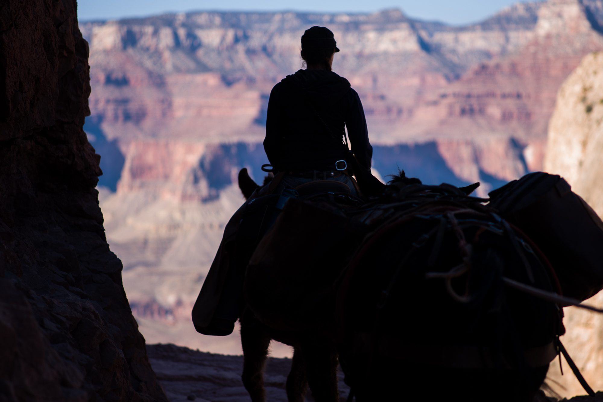 Cowgirl in the Canyon