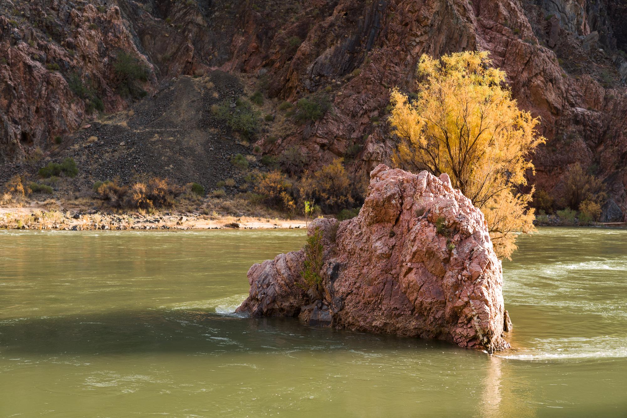 Rock in the Colorado River