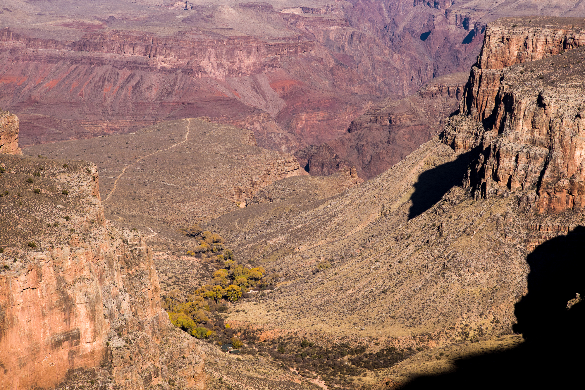 Looking down on Indian Garden campground and the trail to Plateau Point
