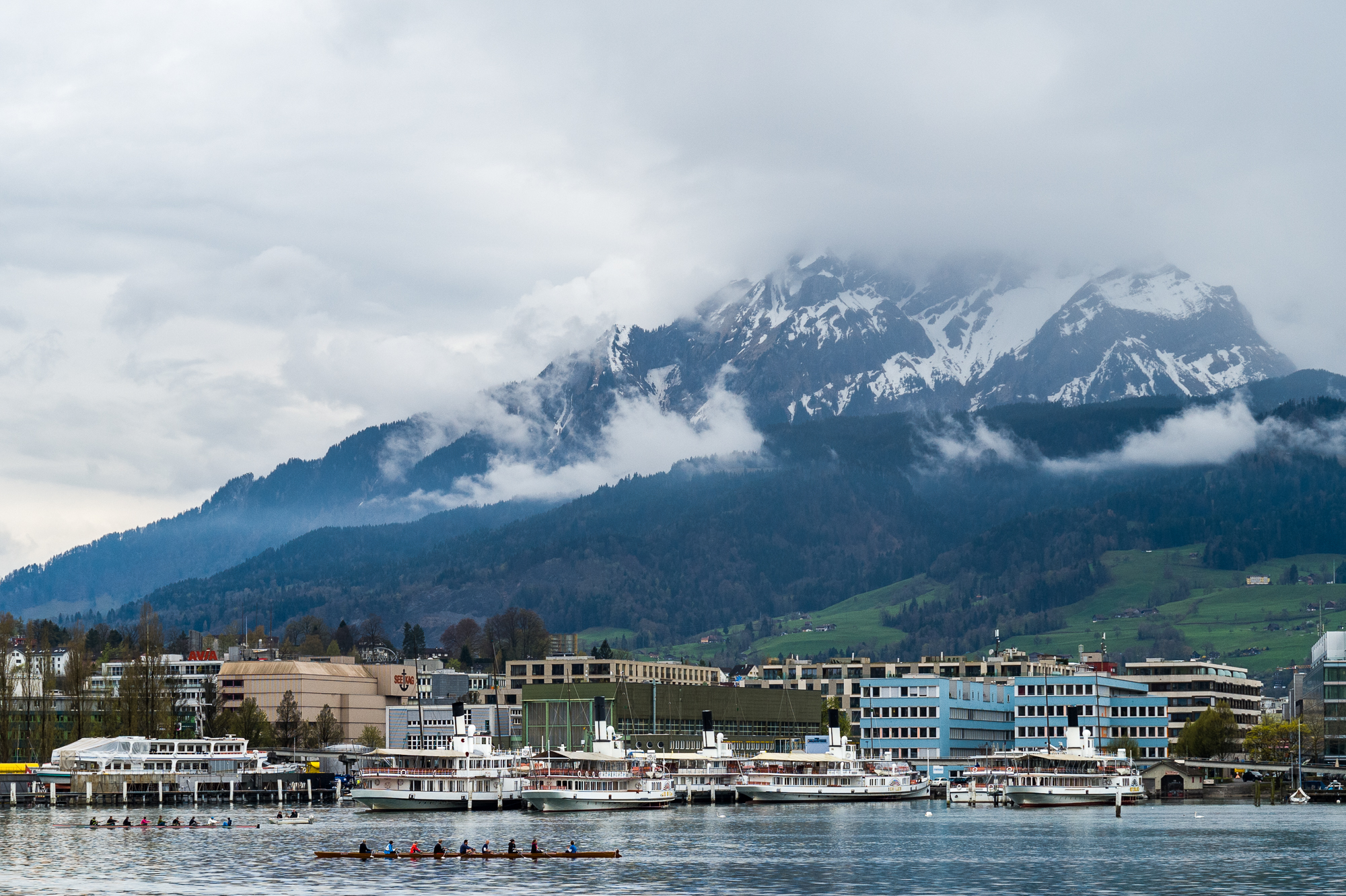 Watch row crew practice on Lake Lucerne from the Switzerhof Hotel