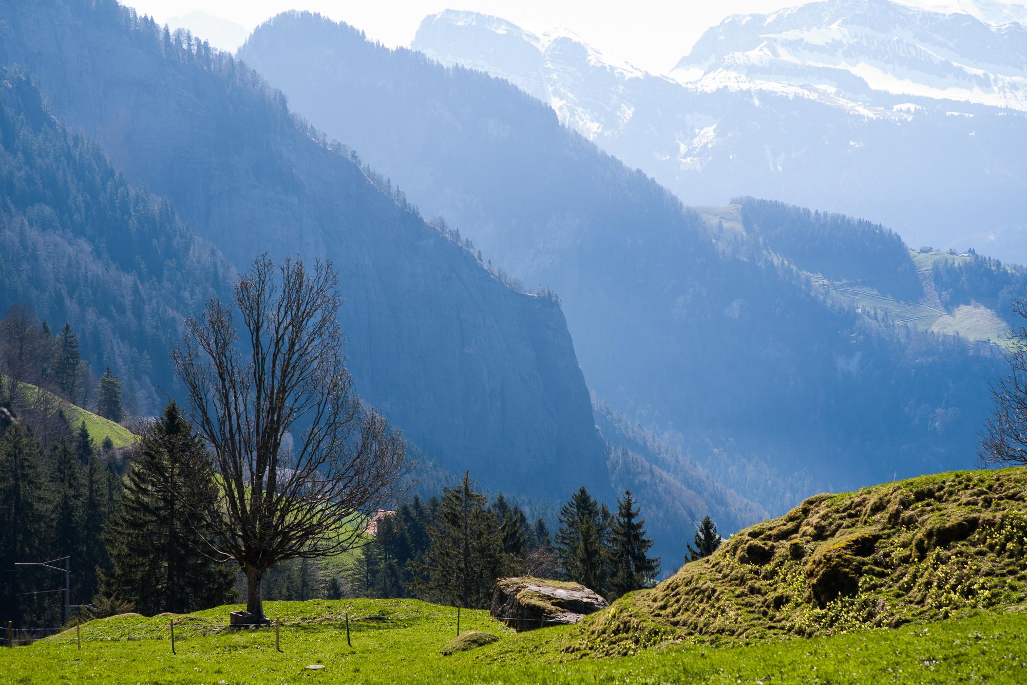 Hiking down to Weggis from Rigi Kaltbad