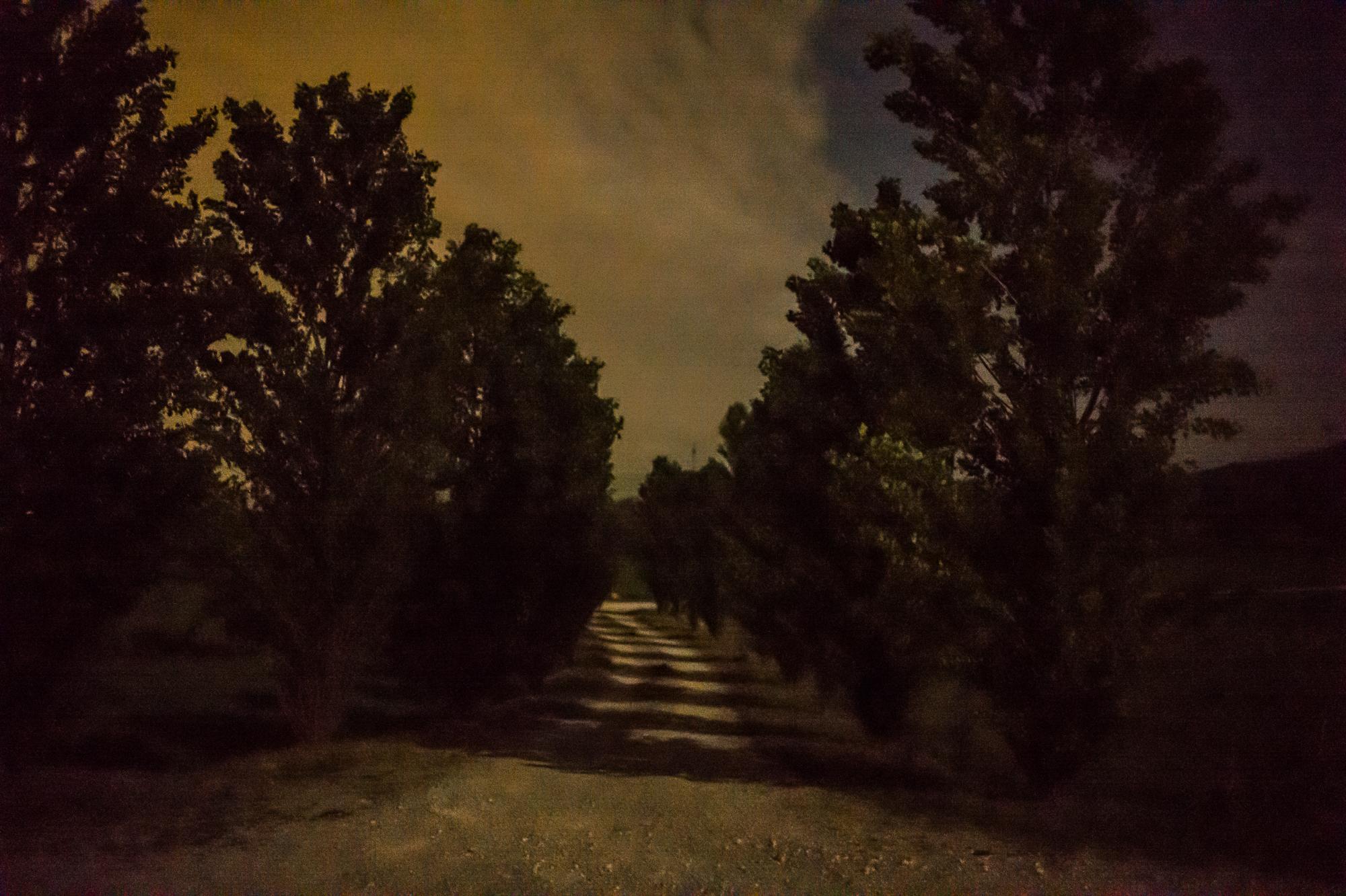 Villa driveway in moonlight