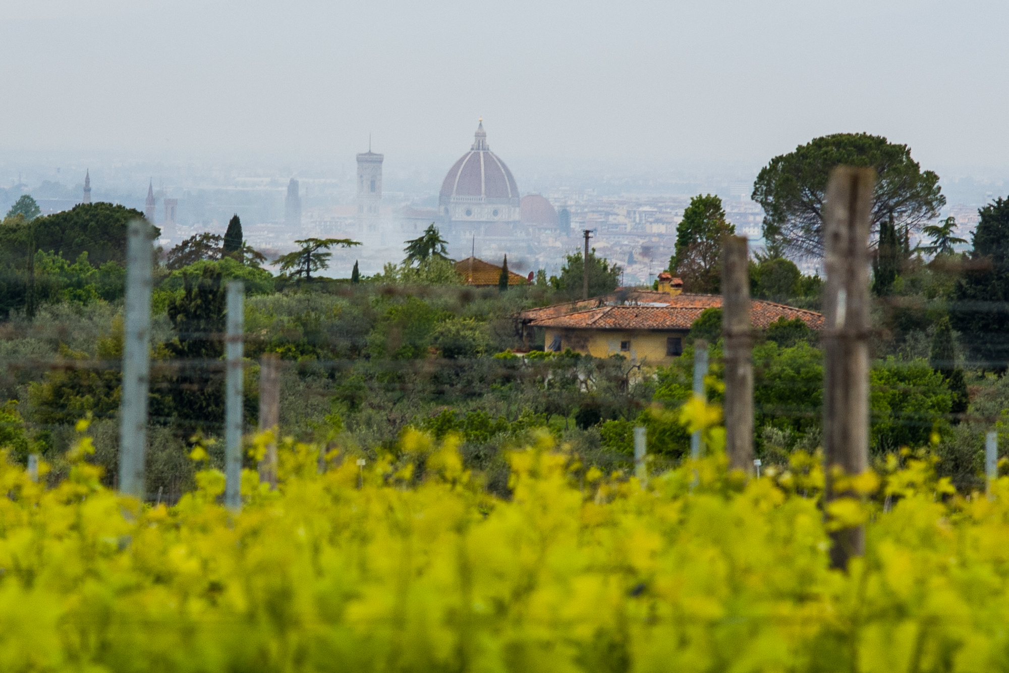 The Duomo from the Villa